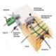 دال پس کشیده- قواعد حاکم، اجزای تشکیل دهنده و نحوه ساخت
